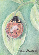 Yellow Leaves Pastels Prints - Ladybug Print by Theresa Stinnett