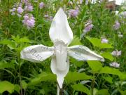 Orchids Sculpture Metal Prints - Ladyslipper Orchid Sculpture Metal Print by Alfred Ng