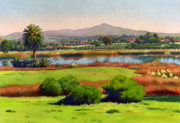 Southern California Framed Prints - Lago Lindo Rancho Santa Fe Framed Print by Mary Helmreich
