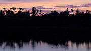 Large Format Prints - Lagoon Sunset 1 Print by Jan Cipolla