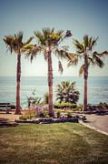 Paul Velgos - Laguna Beach Heisler Park Retro Picture