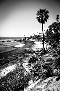 Pacific Coast Beach Framed Prints - Laguna Beach Pacific Ocean Shoreline in Black and White Framed Print by Paul Velgos