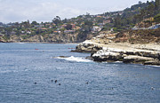 Lajolla Metal Prints - Lajolla Shores 8 Metal Print by Carol Landry
