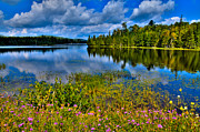 Fir Trees Photos - Lake Abanakee at Indian Lake New York by David Patterson