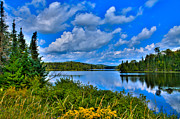 Fir Trees Posters - Lake Abanakee - Indian Lake New York Poster by David Patterson