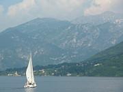Adrienne Lattuca - Lake