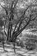 Kate Brown Framed Prints - Lake Bench in Black and White Framed Print by Kate Brown