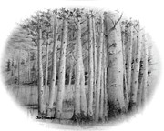 Jim Hubbard Prints - Lake Birches Print by Jim Hubbard