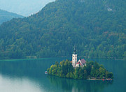Bled Prints - Lake Bled Island Print by Douglas J Fisher
