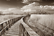 Ciudad Prints - Lake bridge Vintage Print by Guido Montanes Castillo