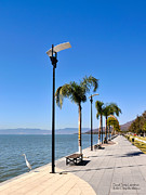Mexico Posters - Lake Chapala - Mexico Poster by David Perry Lawrence