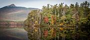 Lake Chocorua Reflection Print by Karen Stephenson