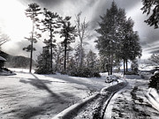 Russ Considine - Lake George Snow Trees...