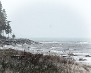 Scott Hovind - Lake Huron Shorleline