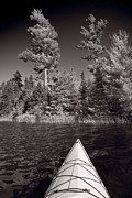 Canoe Photo Framed Prints - Lake Kayaking BW Framed Print by Steve Gadomski
