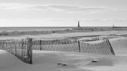 Sand Fences Acrylic Prints - Lake Michigan Dont Fence Me In Acrylic Print by Rosemarie E Seppala
