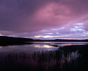 Purple Clouds Prints - Lake Peno Print by Anonymous