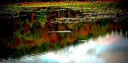 Fishing Creek Prints - Lake Reflection Print by Marcia Lee Jones
