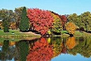 Neurotic Images Photography Prints - Lake Sacajawea Autumn 2 Print by Chalet Roome-Rigdon