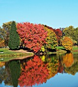 Neurotic Images Photography Prints - Lake Sacajawea Autumn Print by Chalet Roome-Rigdon