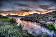 Desert Lake Photo Posters - Lake Saguaro Sunset Poster by Anthony Citro