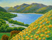 Waterscape Painting Prints - Lake Sonoma Poppies Print by David  Walker