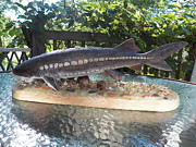Featured Sculpture Framed Prints - Lake Sturgeon Framed Print by Richard Goohs