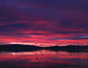 Heather Lavoie - Lake Tahoe Alpenglow