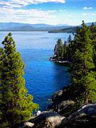 Forested Posters - Lake Tahoe From The Rubicon Trail Poster by Frank Wilson
