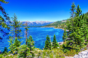 M Framed Prints - Lake Tahoe shoreline Framed Print by Scott McGuire