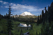 Mountain Reflection Posters - Lake Tipsoo Reflections Poster by Mike Reid