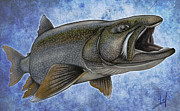Print Drawings Framed Prints - Lake Trout Framed Print by Nick Laferriere