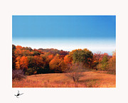 Landscape. Scenic Pastels Framed Prints - Lakemoor Autumn Daus Painting Framed Print by Mike Bernard