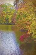 Sandi Oreilly Art - Lakeside Fall Color by Sandi OReilly