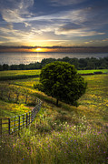 Sunset Scenes. Posters - Lakeside Farm Poster by Debra and Dave Vanderlaan
