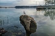 Lakeside Print by Steven  Michael