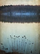Melissa Bittinger - Lakeside Winter Flowers