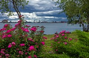 Lake Superior Photos - Lakewalk Summertime. by Mary Amerman