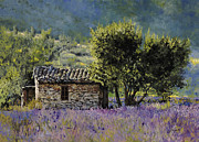 Blu Framed Prints - Lala Vanda Framed Print by Guido Borelli