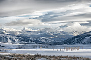 Sunset; Ice Prints - Lamar Valley Afternoon Print by Sandra Bronstein