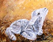 Lamb  Print by Amanda Dinan