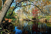 Hunterdon County Framed Prints - Lamington River at Tewksbury  Framed Print by George Oze