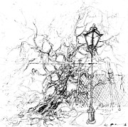 Lamp Post Drawings Framed Prints - Lamp post and tree Framed Print by Kurt Tessmann