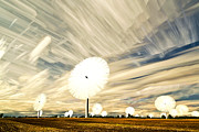 Matt Molloy Prints - Land of the Giant Lollypops Print by Matt Molloy