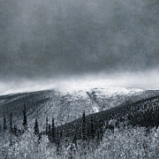 Yukon Territory Photos - Land Shapes 3 by Priska Wettstein