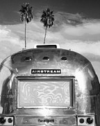 Airstream Prints - LAND YACHT BW Palm Springs Print by William Dey