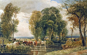 Sluice Prints - Landscape cattle in a stream with sluice gate Print by Peter de Wint