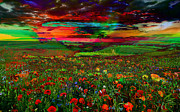 Mary Clanahan - Landscape Flower Field...