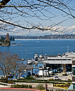 Kirkland Photo Posters - Landscape of Lake Washington from Kirkland Perspective Poster by Valerie Garner