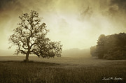 Pasture Digital Art Posters - Landscape With Oak Tree and Clouds Poster by Dave Gordon
